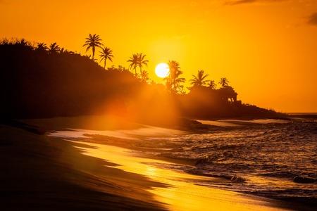 Tropischer Sonnenuntergang am Strand mit Palmen im Morgengrauen
