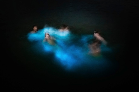 Blurred group of people swimming in glowing waters bio bay