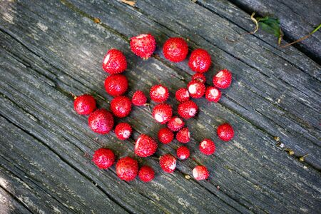 Wild strawberries fresh picked on wooden table close up at day