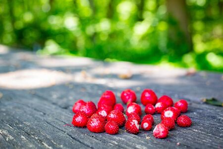 Wild strawberries fresh picked on wooden table close up