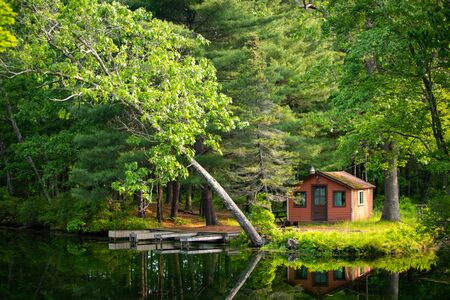 Summer home cabin in the woods at the lake day