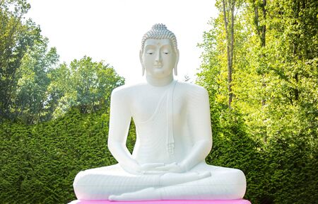 Big Buddah statue isolated white outdoor at day