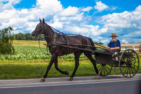 Lancaster, PA / USA - 7/4/2013: Amish man riding a retro carriage on the street at day