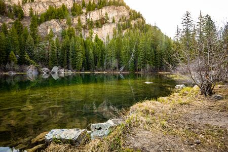 Beautiful Lizard lake White river national park Colorado in summer