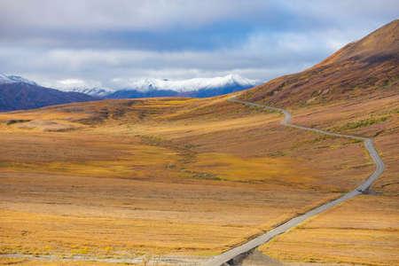 Panoramic view of empty road at Denali national park at fall in Alaska Zdjęcie Seryjne