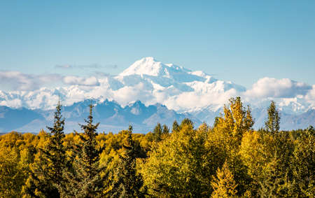 Panoramic view of Denali mountain peak at summer in Alaska from afar