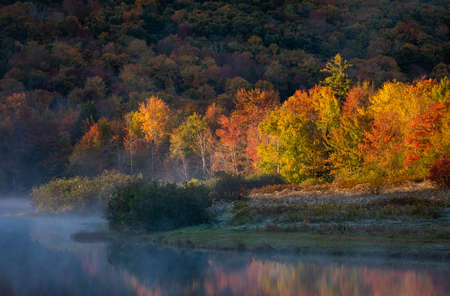 Peaceful sunny morning at a lake in fall