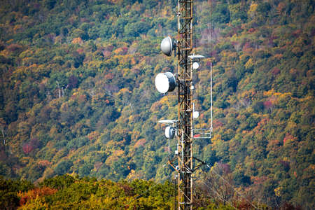 Cellular transmitting tower mounter in the forst hill at fall