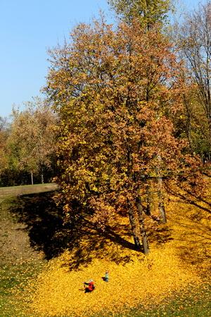 tsaritsyno: Autumn in Tsaritsyno