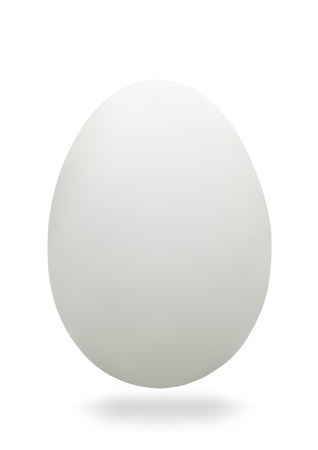 egg white: White chicken eggs on a white background