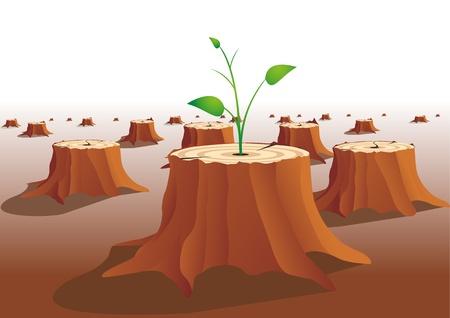 dioxido de carbono: tallo crece en un tocón de árbol