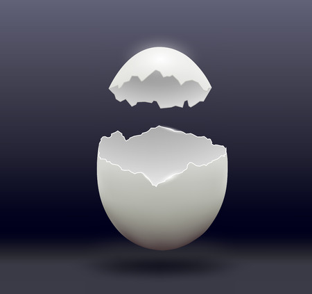 the egg: egg split in half on a dark background