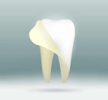Vector image white human tooth