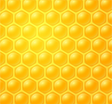studious: honey making in honeycombs