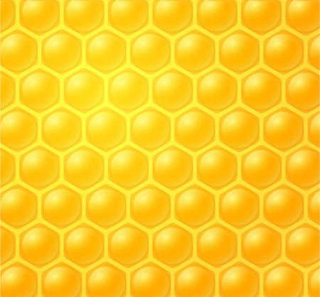 enzyme: honey making in honeycombs