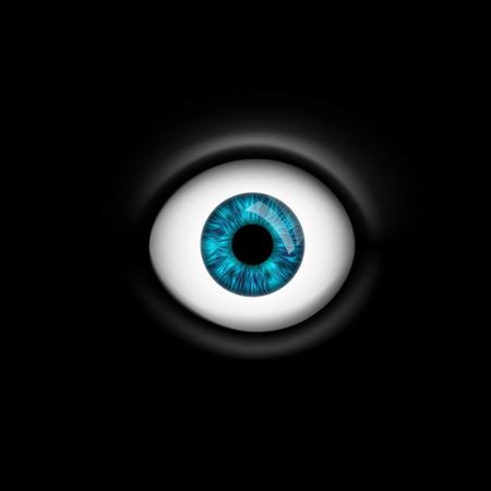 pry: human eye isolated on black background