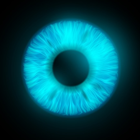eye closeup: iris of the human eye