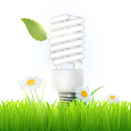 bombillo ahorrador: Vector de la lámpara ahorro de energía con la hoja verde y flores