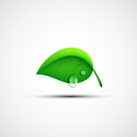 Green leaf icon with a drop of water. Vector image. Ilustração