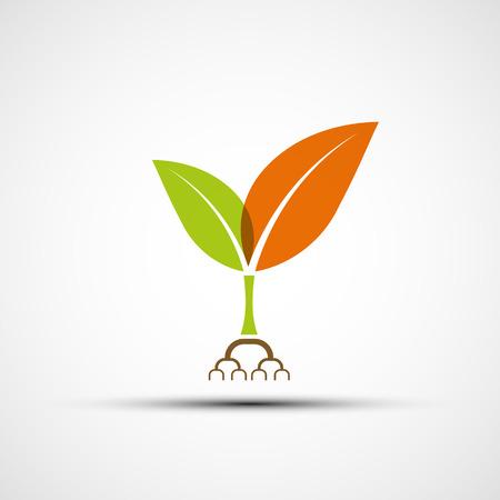 planta con raiz: Logo plantas con hojas de colores. Vector imagen.