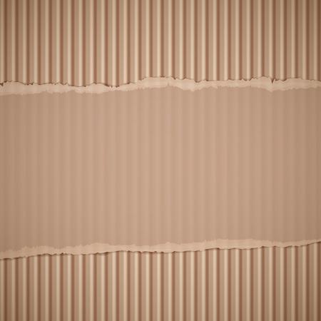 corrugated cardboard: Texture of torn corrugated cardboard. Vector background. Illustration