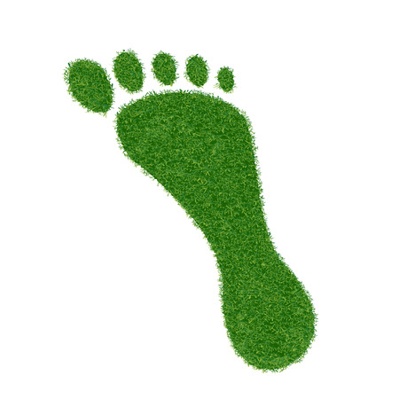 carbon footprint: Footprint of grass. Vector image.