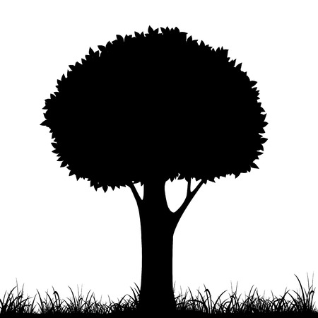 fagaceae: silhouette of a tree and grass. Vector image.