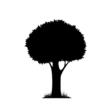 tree grass: silhouette of a tree isolated on white background. Vector image.