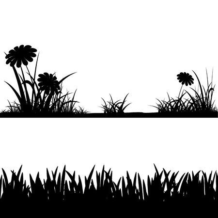 grass silhouettes isolated on white background. Vector image. Vector