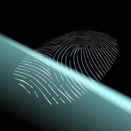odcisk kciuka: Skanowanie linii papilarnych