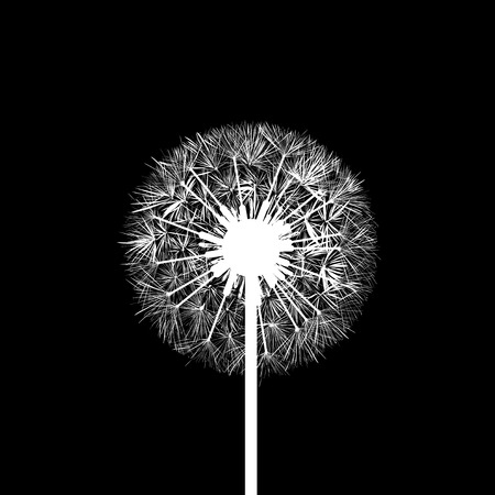 dandelion wind: Silhouette of dandelion flowers Illustration