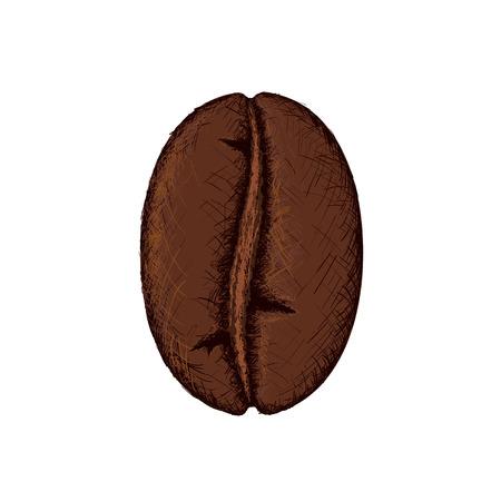 커피 콩 일러스트