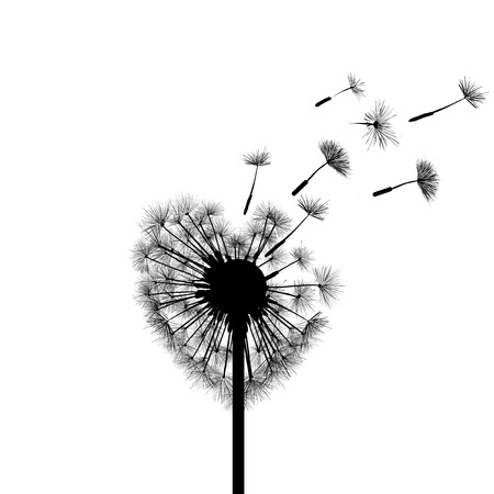 dandelion wind: Silhouette dandelion in the form of heart Illustration