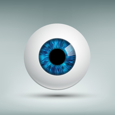 Human eyeball. Blue iris. Stock vector image.