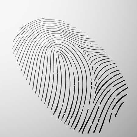 fingerprint: Fingerprint human - Personal identification