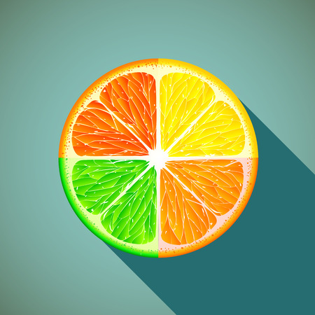citrus: Icon citrus. Healthy lifestyle.