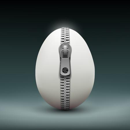 enigma: Chicken egg with zipper.