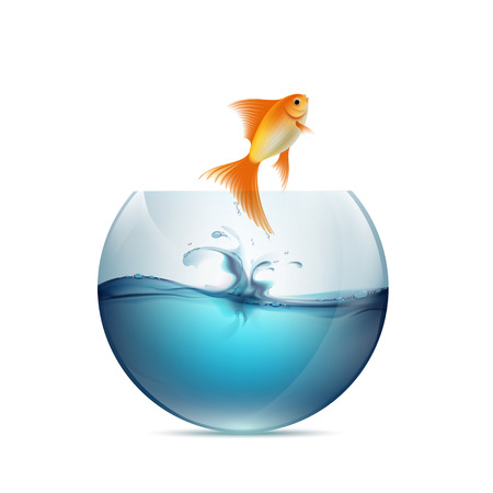 blue glass: Goldfish jumping from the aquarium. Isolated on white background.