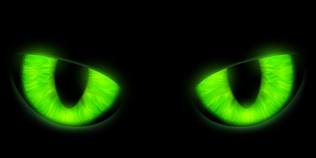 green eyes: Green cats eyes isolated on a black background. Stock vector illustration.
