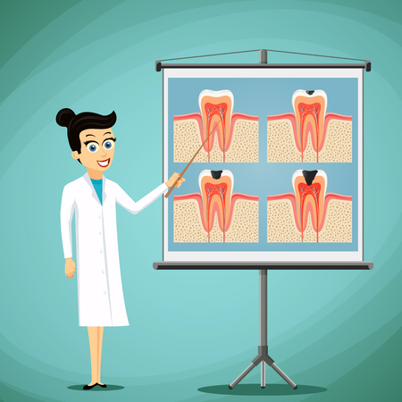 tartar: Doctor dentist shows on a blackboard diagram of the human tooth. Stock vector illustration.
