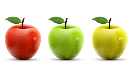 Conjunto de manzanas rojas, amarillas y verdes sobre fondo blanco. Ilustración común del vector.