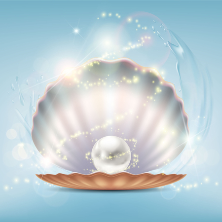 Open beautiful shell with a precious pearl. Stock vector close-up realistic illustration.