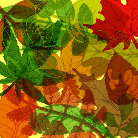 Background of hand drawn colorful autumn leaves. Natural pattern. Stock vector illustration.