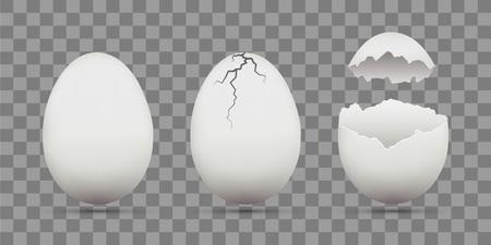 Conjunto de huevos de gallina blanca. Shell con grietas. Aislado en un fondo transparente. Plantilla de vector de stock.