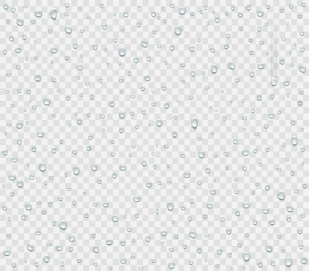 Water droplets of rain or spray isolated on transparent background. Condensate vapor on the glass. Vector illustration. Archivio Fotografico - 118976749
