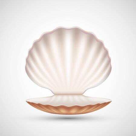 Open empty seashell icon isolated on a white background. Vector illustration 向量圖像