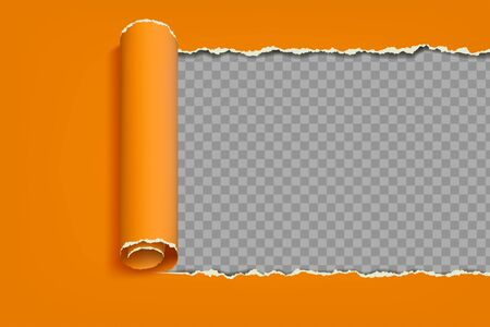 Torn sheet of paper with a curled edge. Frame template for copy space is isolated on a transparent background. Vector illustration.