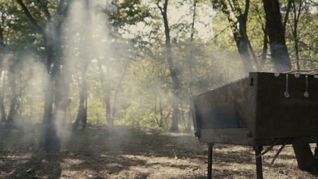 Amazing smoke from the bbq in the forest with sun lights and fog.