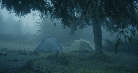 Horror look in the forest - Two spherical tents in a grassy lawn in a forest 写真素材