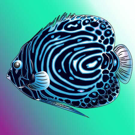 Een vector blauwe zeevis uit de oceaan Stock Illustratie